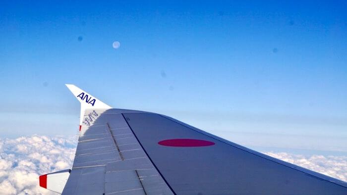 翼と月の画像