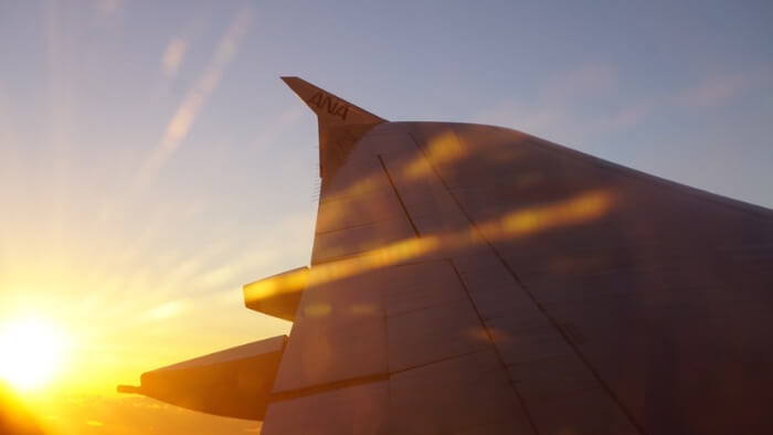 初日の出と翼の画像