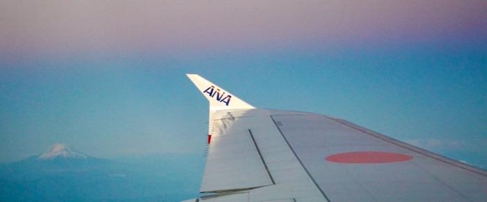 翼と富士山の画像